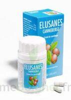 ELUSANES CANNEBERGE, bt 60 à LE BOUSCAT