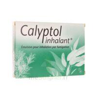 CALYPTOL INHALANT, émulsion pour inhalation par fumigation à LE BOUSCAT