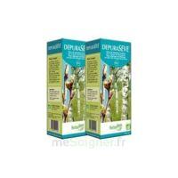 Herbalgem Dépurasève Bio 250ml à LE BOUSCAT