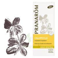 PRANAROM Huile végétale bio Calophylle 50ml à LE BOUSCAT