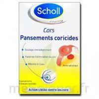 Scholl Pansements coricides cors à LE BOUSCAT