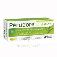 PERUBORE Caps inhalation par vapeur inhalation Plq/15 à LE BOUSCAT