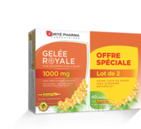Forte Pharma Gelée royale 1000 mg Solution buvable 2*B/20 Ampoules/10ml à LE BOUSCAT
